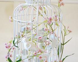 wedding chair cover hire lancaster butterfly covers gold venue decoration | cumbria lake district lancashire