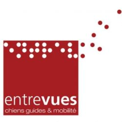 Logo Entrevues