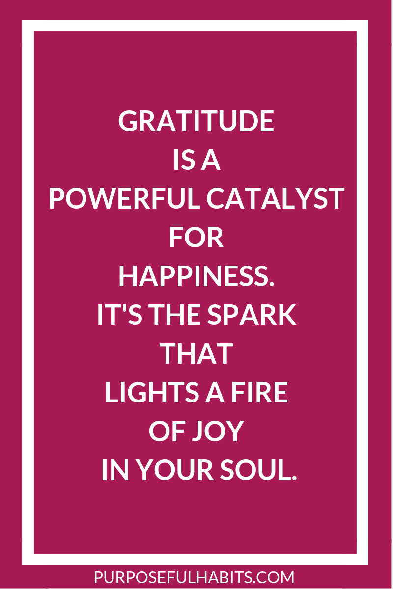 Gratitude is a powerful catalyst for happiness. It's the spark that lights a fire of joy in your soul. Are you feeling overwhelmed and unhappy? Gratitude can be a HUGE game changer. Click here for 7Simple but Meaningful ways To Enrich Your Life #gratitude #gratitudequotes #attitudeofgratitude #grateful #thankful #thankfulquotes #affirmations #gratitudejournal #begrateful #gratefulness #mindfulness #happy #mindfulness #mindfulliving #abundance #happiness #joy #motivationalquotes #quotes