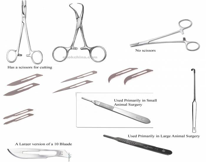 Miscellaneous Surgical Instruments