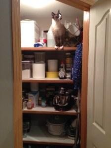 Loki-pantry