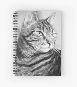Redbubble cat notebook