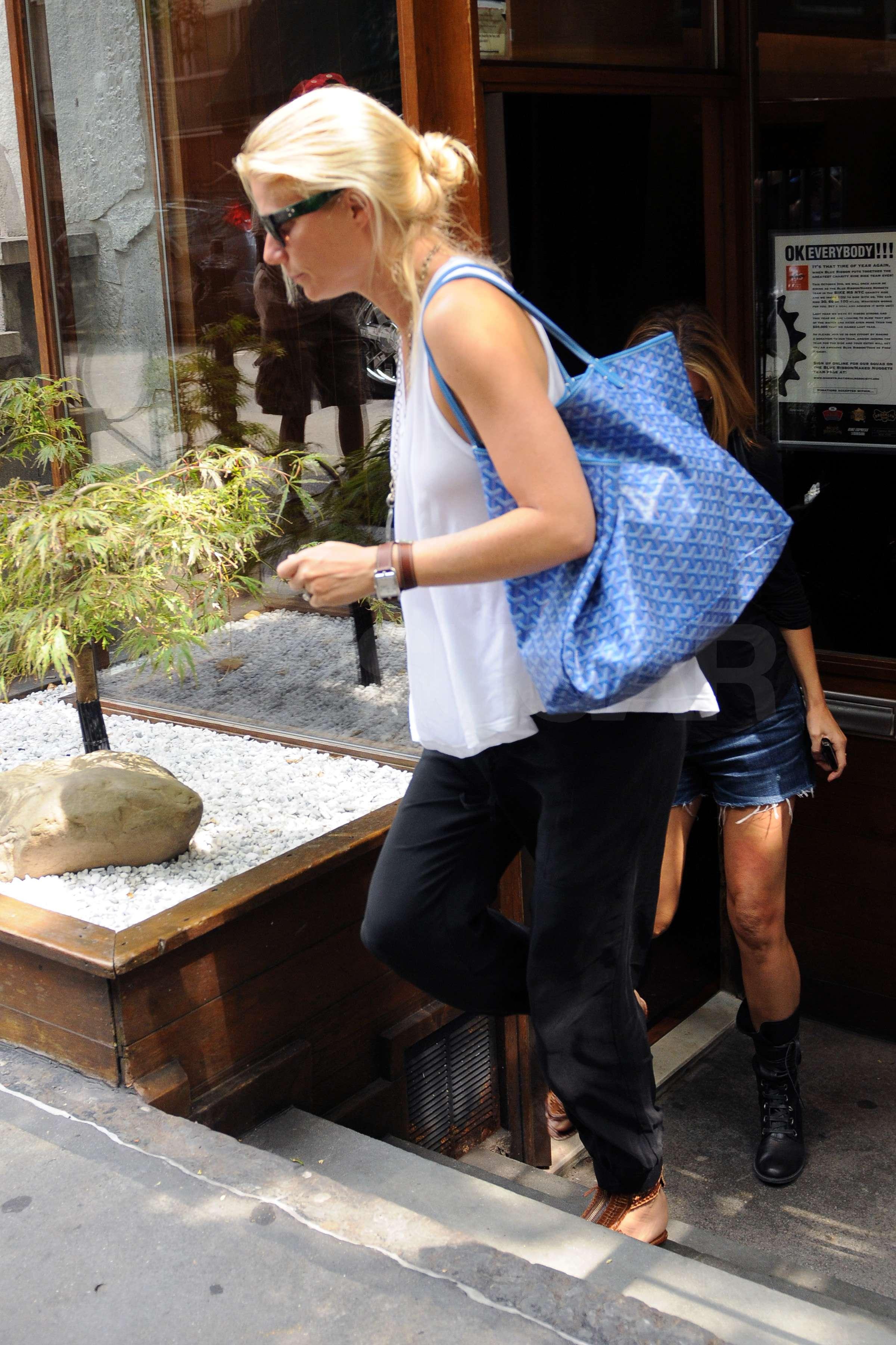 Celebrity goyard bag