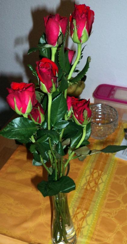 Bunga Mawar Merah Merekah tidak sampai 2 Euro