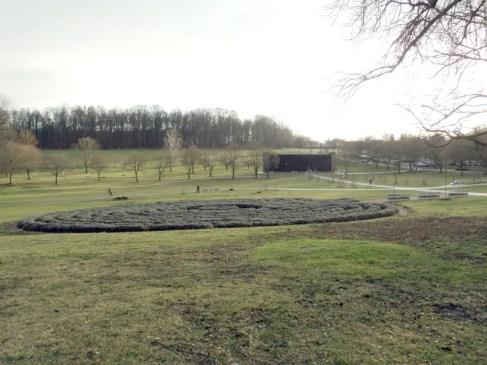 Lavendel labyrinth in Salinenpark