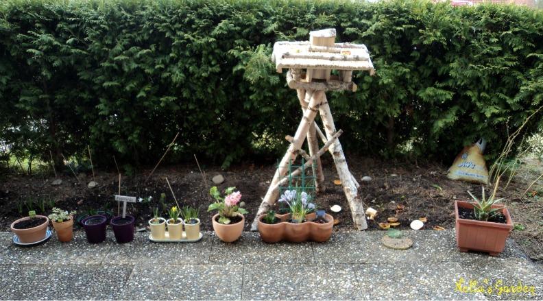 Update My Garden