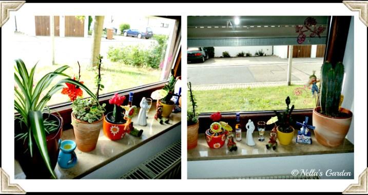 Jendela Ruang Makan