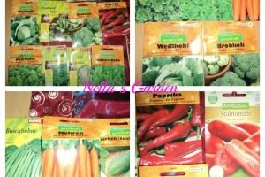 Bibit-Bibit Tanaman ada wortel, cabai, Paprika, sayuran dll
