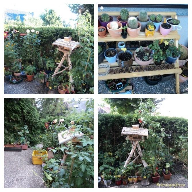 Kebun minimalis di Rumah Jerman