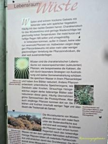 Papan Informasi mengenai Kaktus
