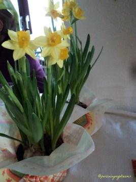 Di Jerman, bunga Narcissus dikenal sebagai Osterglöckchen (lonceng Paskah), karena bunga ini akan bermekaran menjelang Paskah, dan bentuk bunganya mirip lonceng