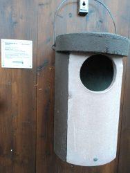 Nah kalau ini untuk rumah Burung Hantu, ukurannya Besar