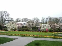 Pemandangan Taman Wilhelma 20 April 2013