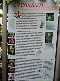 Informasi Anggrek dari Berbagai Negara. Wilhelma Stuttgart