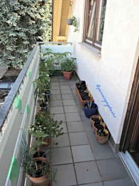Balkon Depan