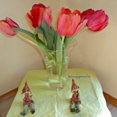 Tulip adalah salah satu Bunga Potong yang cantik