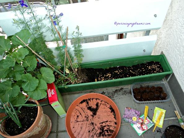Pot siap di tanam dengan benih bunga yang baru