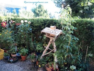 My first Garden. Summer 2012