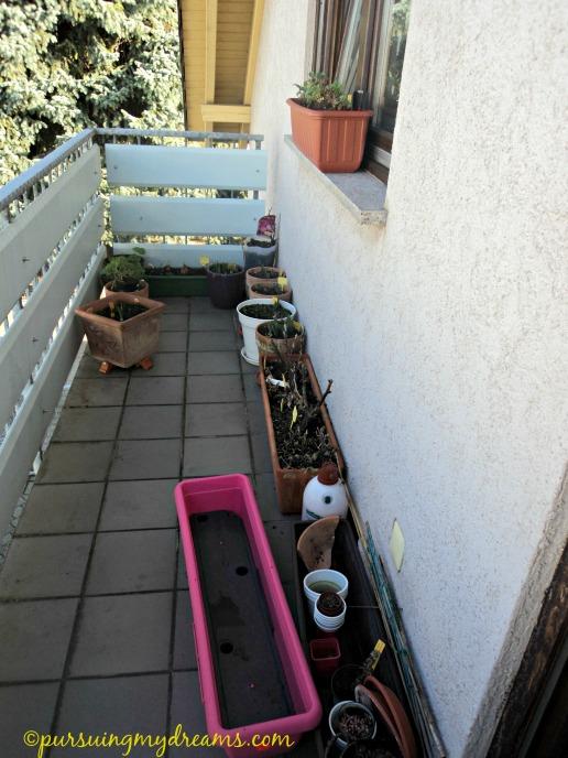 Pemandangan balkon depan. Tahun ini akan saya buat lebih rame dengan berbagai tanaman. Pot pink tuh diskon 50 persen :D