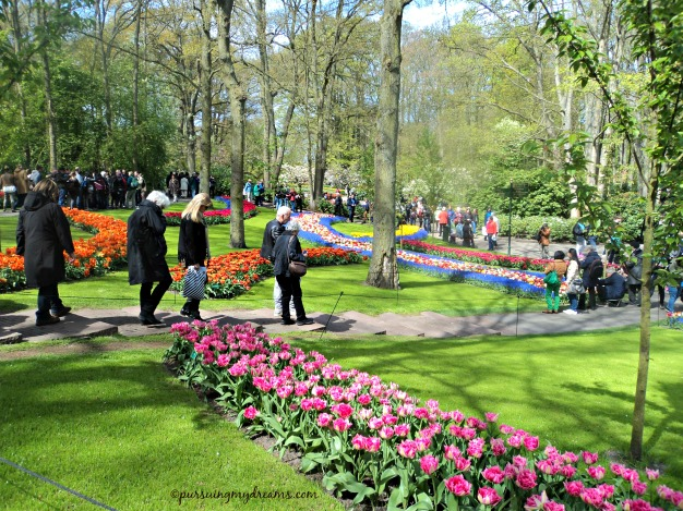 Tulips at the Keukenhof on 1 May 2015