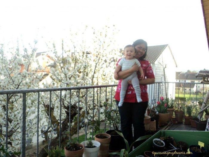 Tidak perlu pergi jauh untuk me lihat bunga sakura, cukup ke balkon bisa lihat sakuranya tetanga. 17 april 2015. jam 19.42