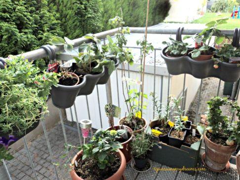 Gunakan Pot gantung untuk lahan sempit