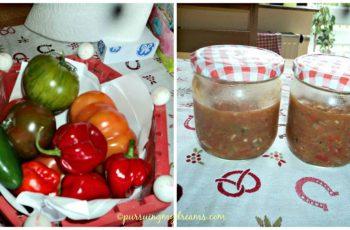 Musim panas bikin sambal melulu, cabe dan tomat melimpah