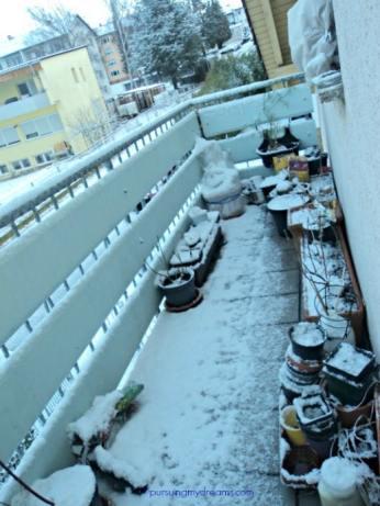 berantakan balkon depan, untung si pohon cherry sudah dikirim