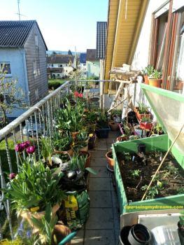 Pemandangan balkon belakang. Foto 19 April 2016