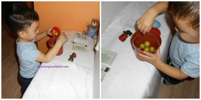 Selama masih hijau masih bisa dimainin tomat-tomatnya, kalau sudah jadi merah saya buang