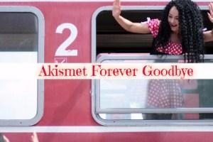 Akismet Forever Goodbye, Biang Keladi Komen Tidak Muncul