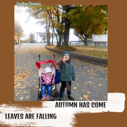 Musim gugur dedaunan rontok. Autumn has come