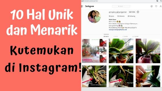 10 Hal Unik dan Menarik Kutemukan di Instagram