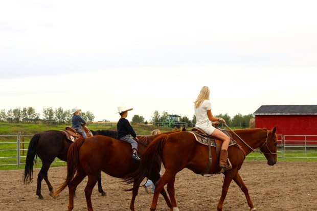 Horseback riding in alberta