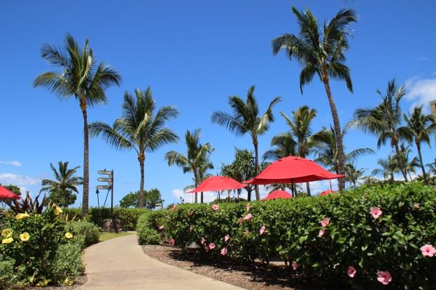 Kid-friendly hotel in Maui Hawaii