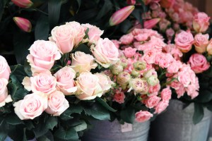 Instagrammable London, UK - Wild Things Flowers - where to take photos when traveling in London