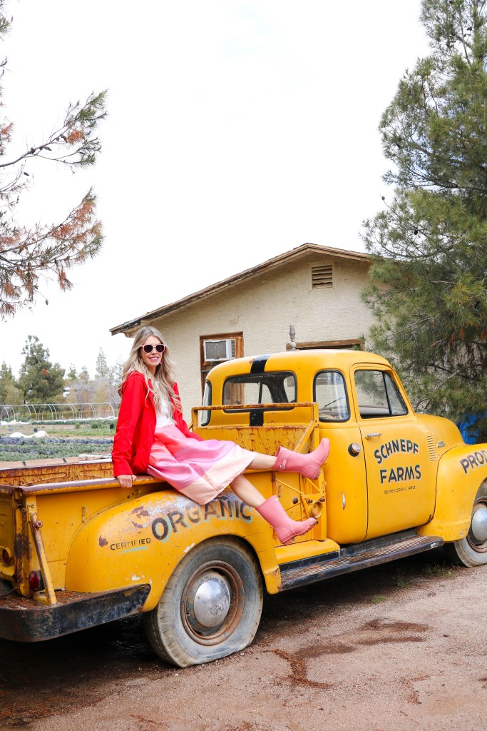 Glamping in Arizona on Schnepf Farms! The newest travel rage, AirStream trailer camping on a peach orchard!