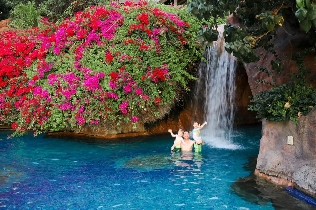 Hyatt Regency Maui Pools