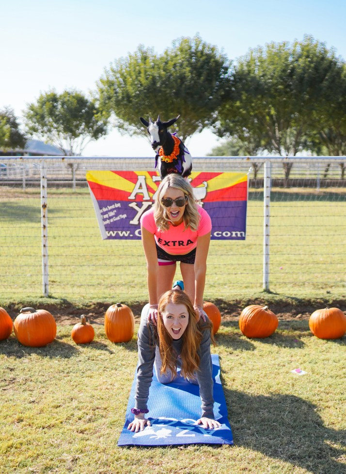 Goat Yoga in Gilbert, Arizona - bucket list travel - Arizona Goat Yoga class