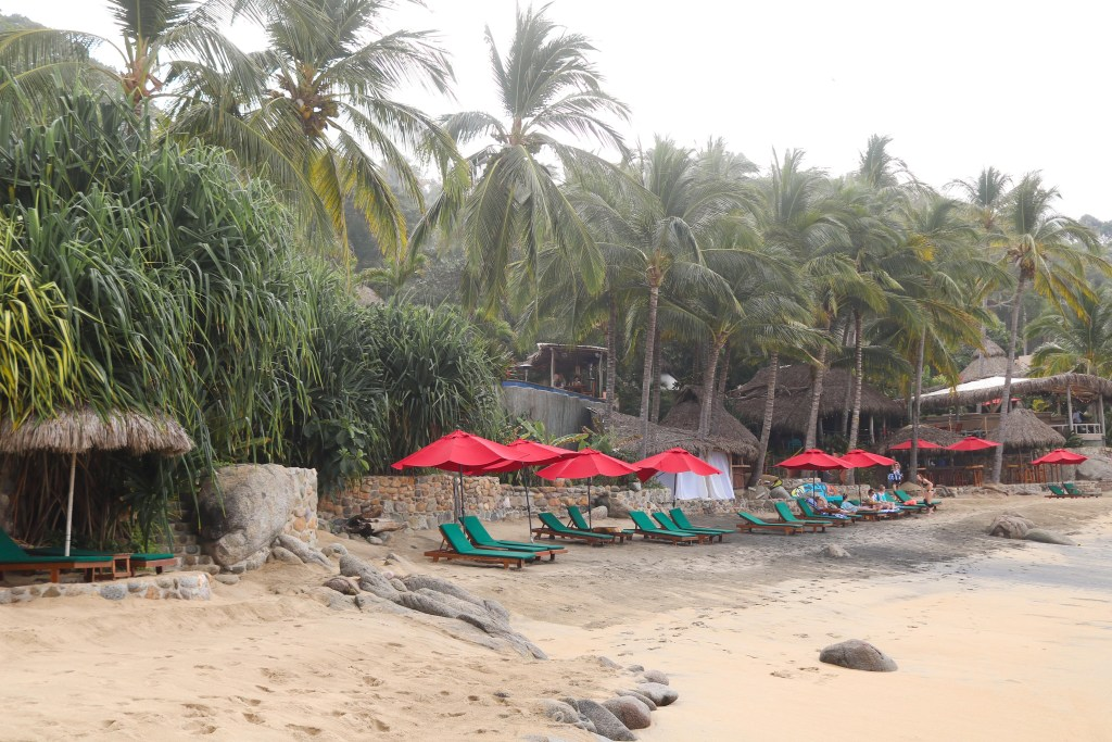 Bachelor in paradise beach hotel in Sayulita