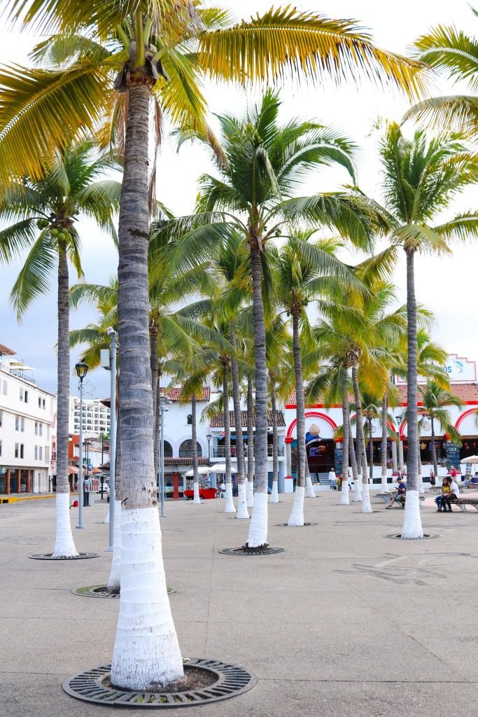 The Malecon Boardwalk in Puerto Vallarta