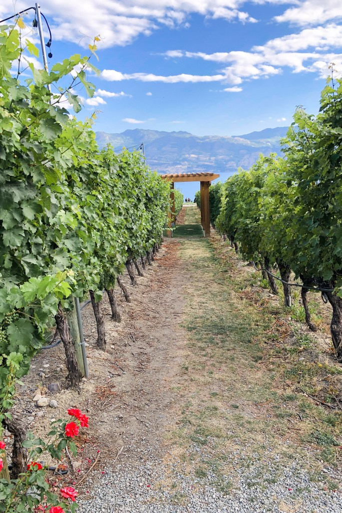 The Most Instagrammable Winery in Kelowna - Quail's Gate Estate Winery - #instagramtravel #canada #canadian #kelowna #travelguide