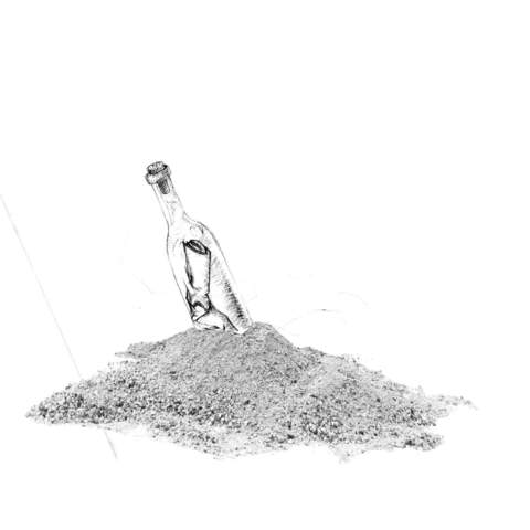 Donnie Trumpet Surf