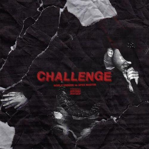 Noelz Vedere Challenge