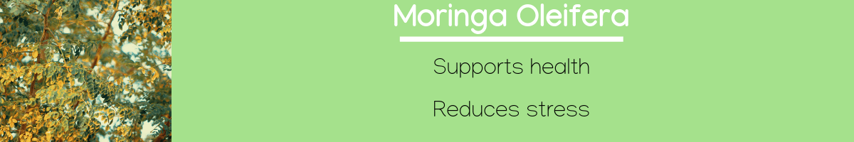 Moringa Oleifera Infographic