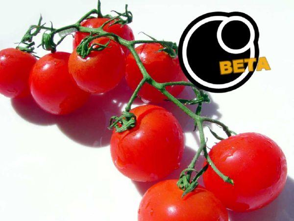 CherryTomato: Aplikasi Pomodoro Gabungan Antara Online dan Offline