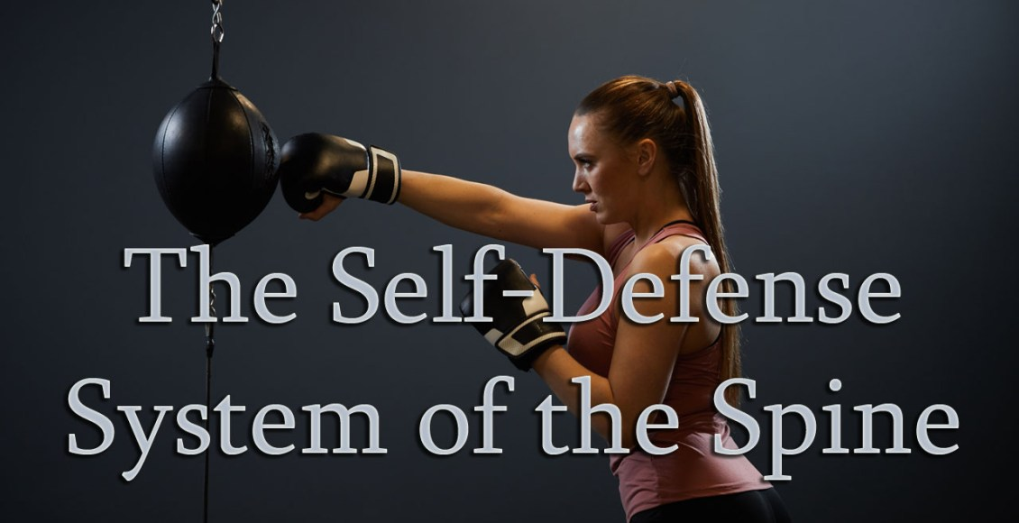11860 Vista Del Sol, Ste. 128 The Self-Defense System of The Spine El Paso, Texas