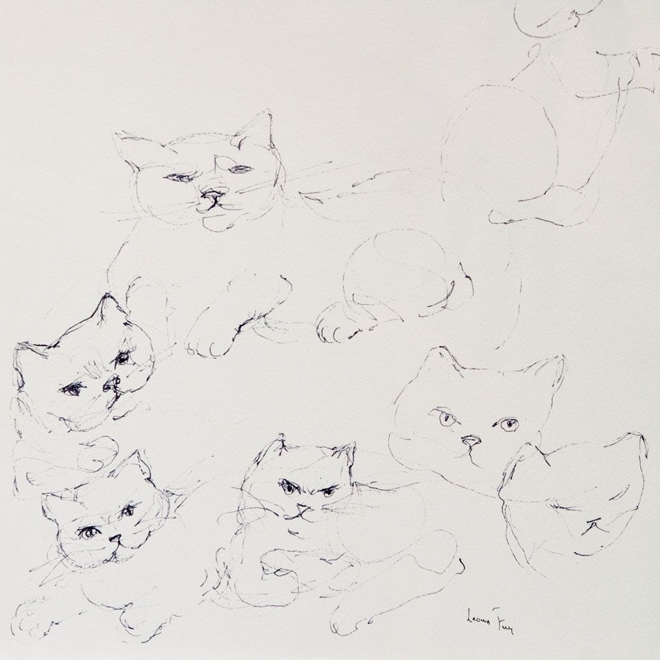 leonor-fini-peintures-dessins-1988-six-chat-2