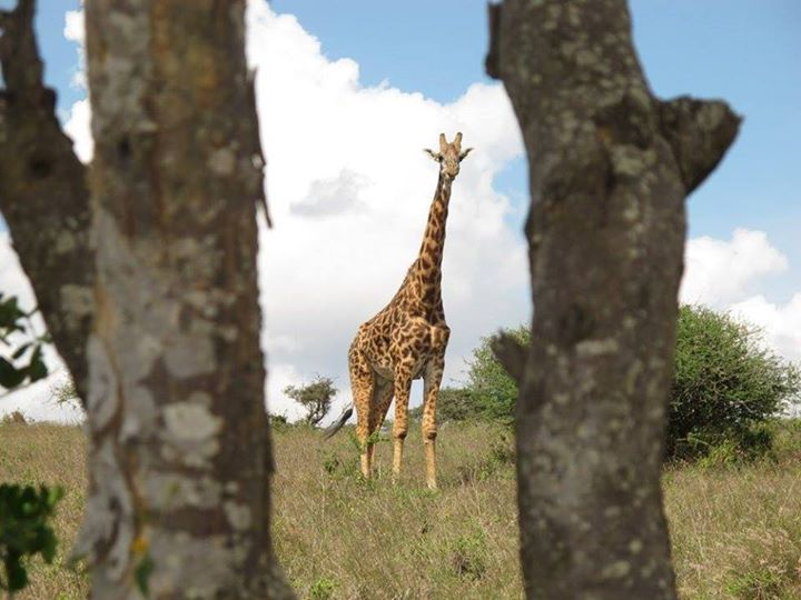 mjesta za upoznavanje u Južnoj Africi, Durban