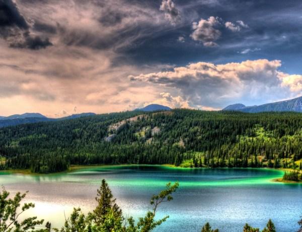 Dokumentarni film: Ljeto na Aljasci